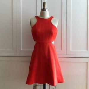 Club Monaco Tangerine Orange Mini Dress